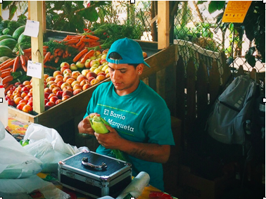 Photo // Charlotte Gibson Adrian Rosado prepares vegetables for a local customer on Thursday, August 28, 2014.